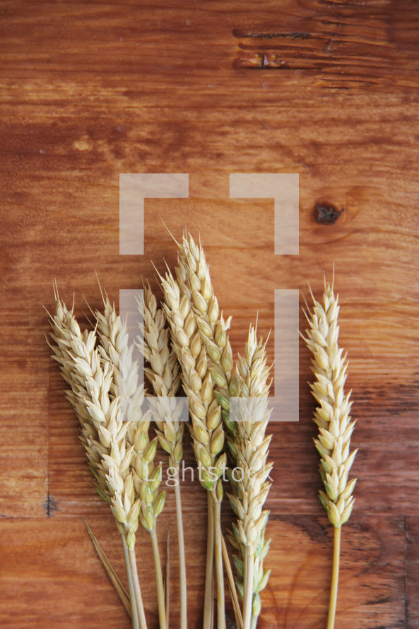 Wheat on wood background