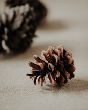 pines cones on linens