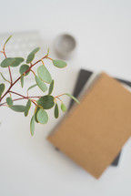 eucalyptus twigs and journal