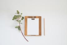 eucalyptus twig, clipboard, blank paper, pencil