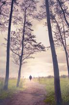 a man walking on a path through a fog forest