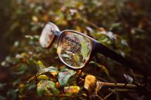 wet lost glasses
