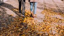 fall leaves on a sidewalk in Copenhagen