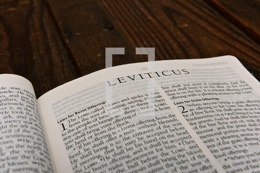 Scripture Titles - Leviticus