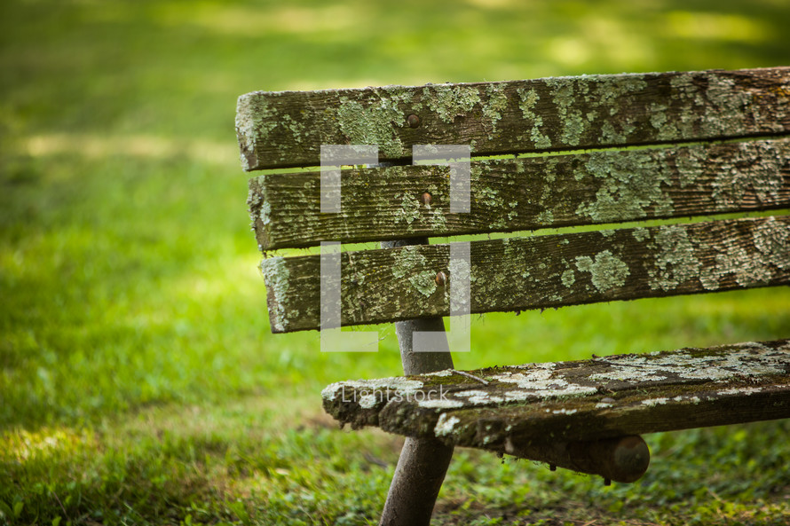weathered park bench