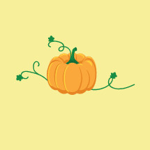 orange pumpkin and vines