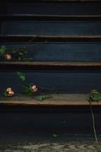 dead roses on steps