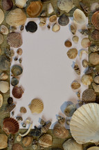 blank paper and seashells, on a beach mat