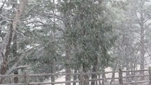 falling snow and winter fence line