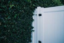 bush and white fence