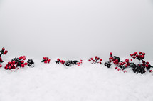 red berries and pine cones in snow