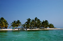 Island with palm trees and  the ocean surrounded by coral reef