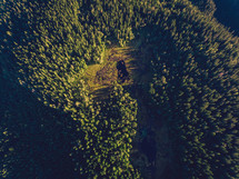 aerial view over forest below