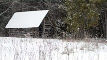 wood shed and falling snow