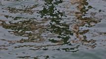 surface of lake water