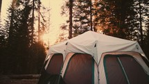 Tent in the forest at dawn: Camp Shoot - 1 of 4