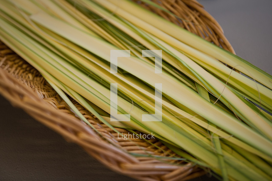 palm fonds in a straw basket