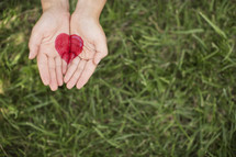 A heart painted onto two hands extended over green grass.