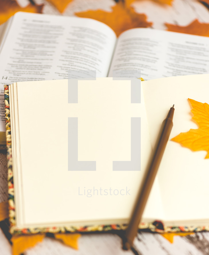 journal, pen, open Bible, and fall leaves