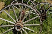Wagon wheels in long grass.
