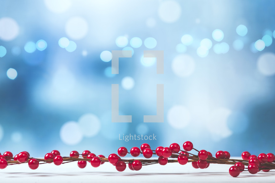 Winter Berries Background