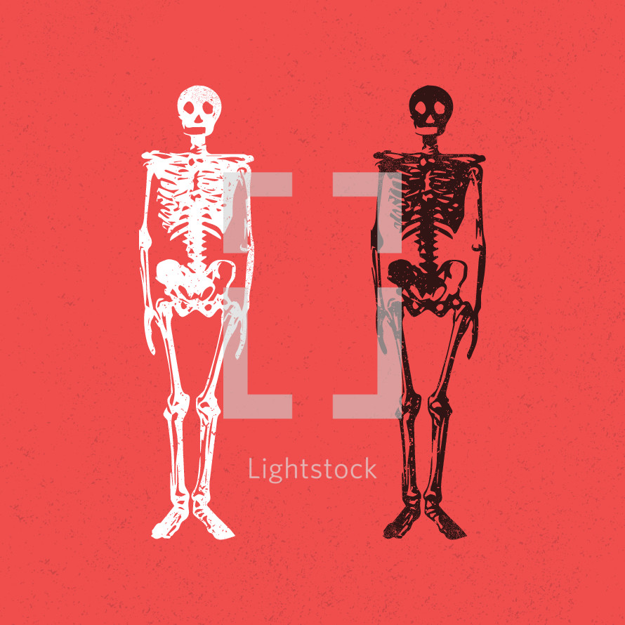 skeleton icons