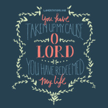 Lamentations 3:58, You have taken up my cause O Lord you have redeemed my life