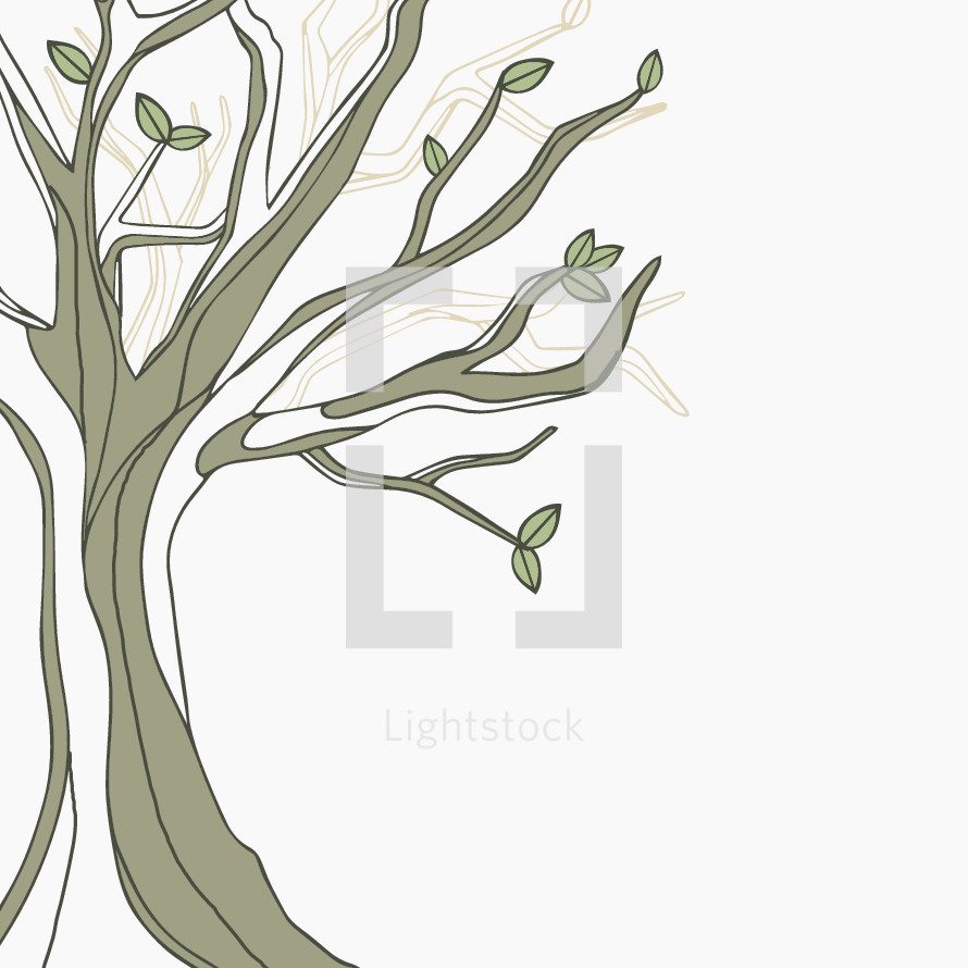 hand drawn tree illustration.