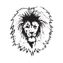 sketched lion head