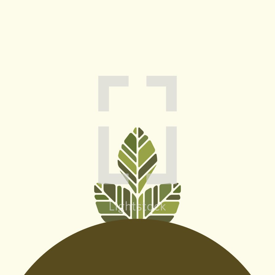 growth concept, plant on hill