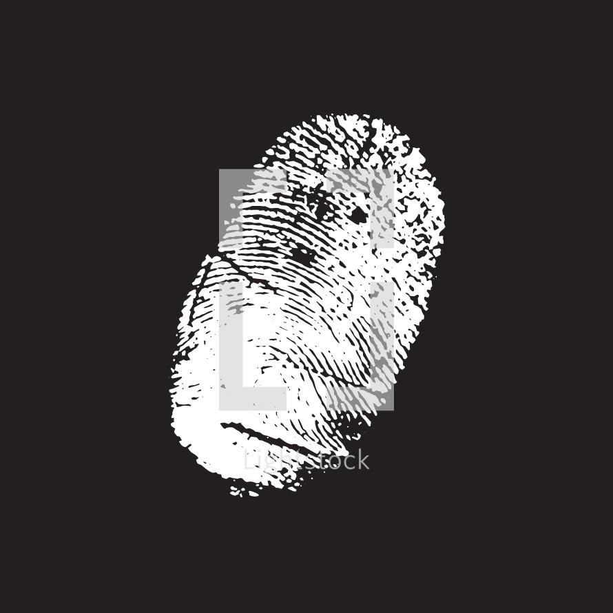 vector fingerprint.
