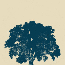 Grunge vector oak tree.