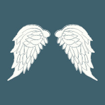 A pair of angel wings.