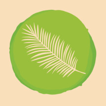 Palm frond illustration