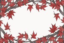 red maple leaves frame
