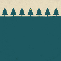 Lone Christmas tree in a pine forest.