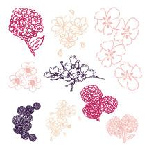 sketched flower illustrations.