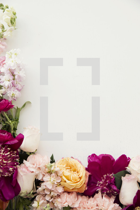 border of flowers