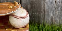 baseball in a glove in the grass