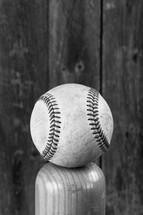 a baseball balancing on a baseball bat