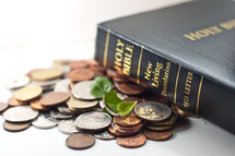 A Holy Bible on coins