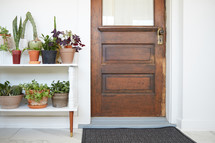 shelf of potted plants by a front door