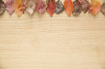 fall leaves border on wood