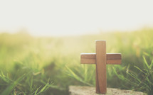 wooden cross in green grass