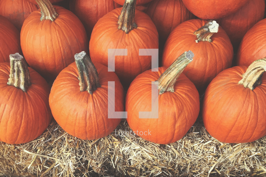 Fall Harvest Background with Stack of Pumpkins Over Hay