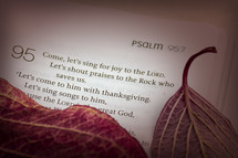 Psalm 95:7