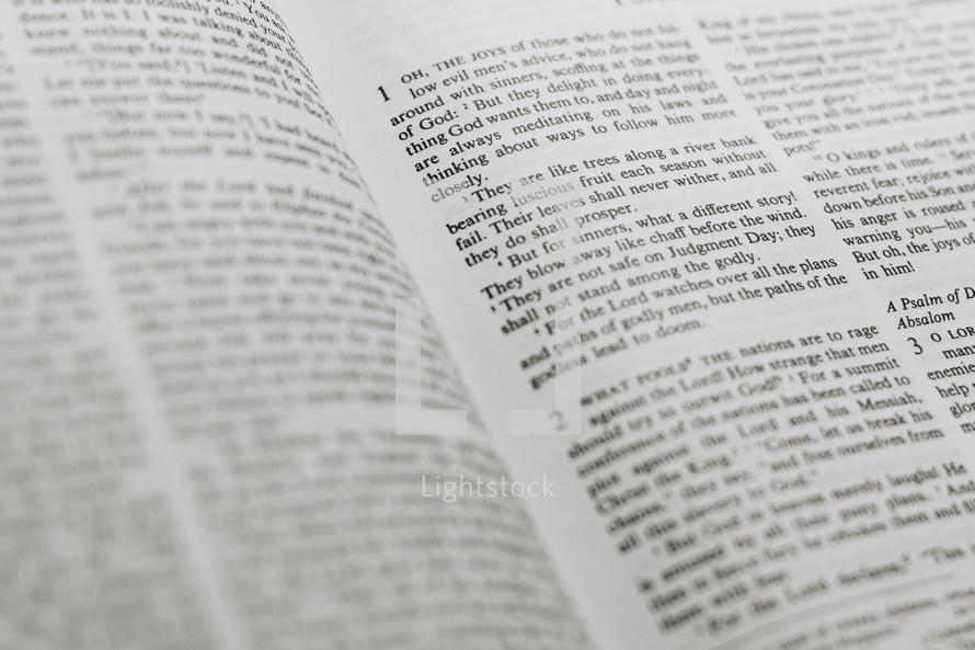 Bible words