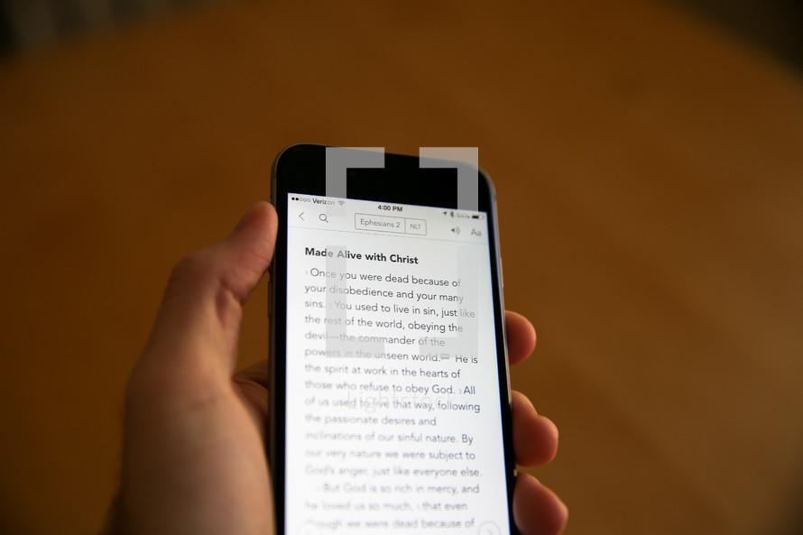 a Bible app on a cellphone