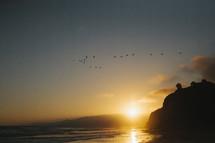 seagulls flying over the ocean near a beach at sunset
