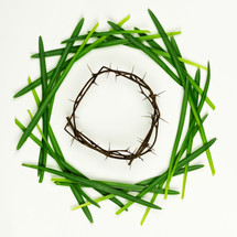 Easter wreath of grass blades and a crown of thorns